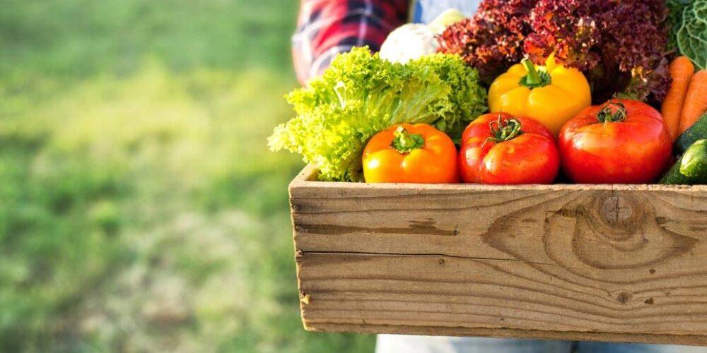 Agri food (landbouw)