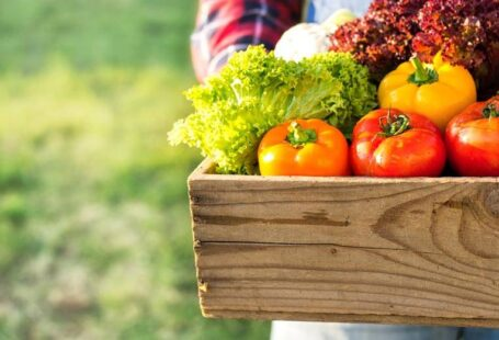 Agri food (Kartoffeln, Karotten, Zwiebeln)